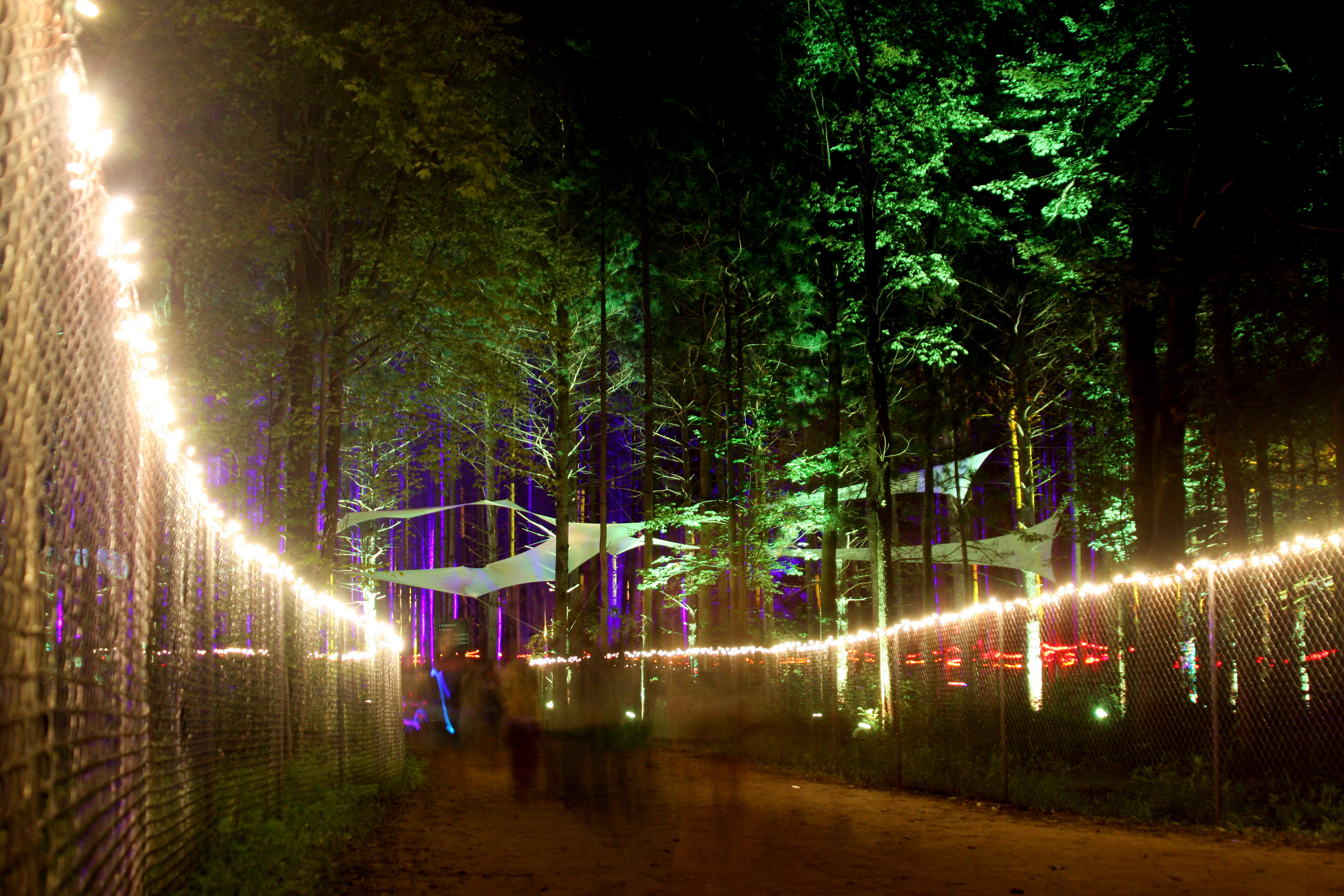 String Lights Music : ELECTRIC FOREST JULY 4TH WEEKEND, 2011 DOUBLE JJ RESORT ROTHBURY, MICHIGAN FEATURING HEADLINERS ...